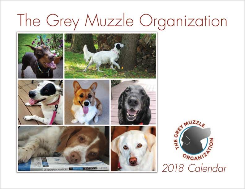 2018 Calendar Cover - Collage of Old Dogs