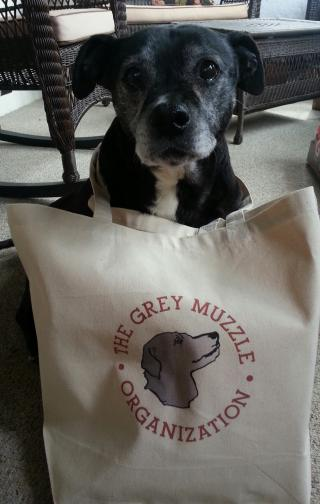 Mabel and her Grey Muzzle tote bag
